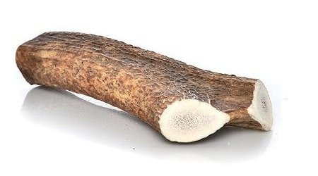 Happy Dog Of Cape Cod Happy Dog of Cape Cod Whole Elk Antler X-large Whole 8-13' for Dogs 75 lbs and u