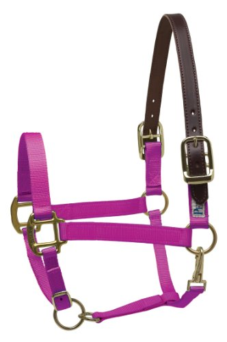 Perri's Safety Halter, Raspberry, Pony
