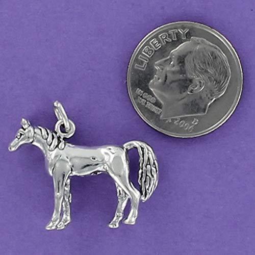 Amazon.com: Pulsera de plata de ley 925 para caballo árabe ...