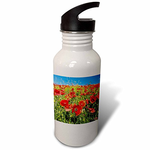 3dRose Danita Delimont - Flowers - Spain, Andalusia. A field of bright and cheerful red poppy wildflowers - Flip Straw 21oz Water Bottle (wb_277891_2) by 3dRose