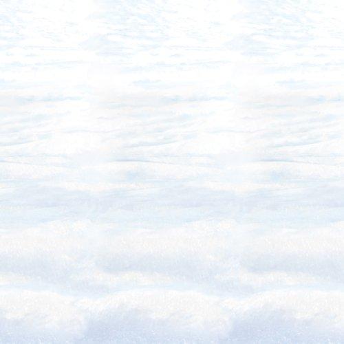 Snowscape Backdrop Party Accessory (1 count) (1/Pkg)