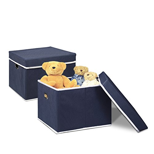 FURINNO 2NW13091DBL Non-Woven Fabric Heavy-Duty Storage Organizer (2 Pack), Dark Blue