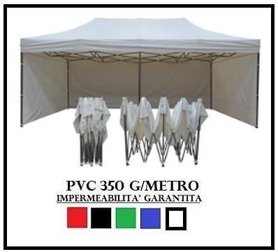 Ray Bot - Carpa plegable de acero de 3 x 6 m de color blanco con 4 lonas laterales de PVC de 350 g/metro: Amazon.es: Jardín