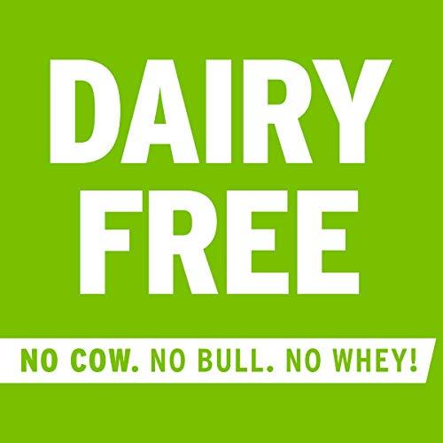No Cow Protein Bar Chocolate Coconut, Plant Based Protein (21g), Keto Friendly, Low Sugar, Dairy Free, Gluten Free, Vegan, High Fiber, Non-GMO, 12 Count