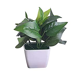 BALANSOHO Artificial Green Plants Set Artificial Flower Shelf Window Small Ornaments Silk Flower Small Potted Plant Home Accessories (E) 118