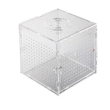 Los titulares DealMux acuario de plástico Ventosa capas únicas Caja ...