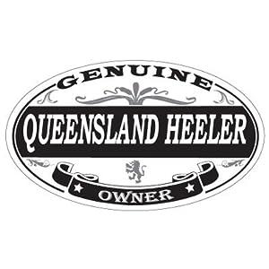 US Decal, Inc. Queensland Heeler Oval Magnet 6