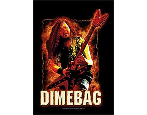NNG Pantera Dimebag Darrell - Fire - Textile Poster Flag