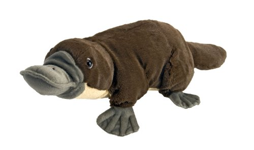 Wild Republic Platypus Plush, Stuffed Animal, Plush Toy, Kids Gifts, Cuddlekins, 12 Inches (Beaver Plush Stuffed)