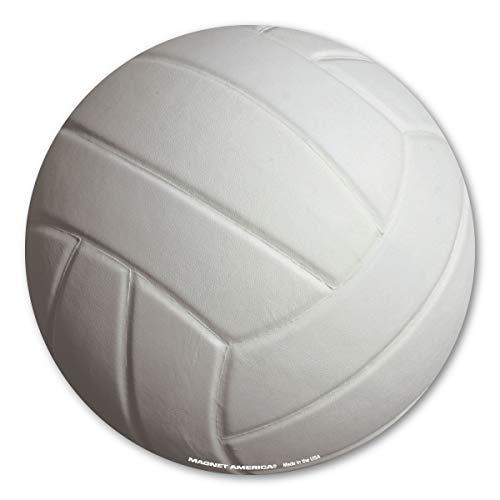 Flagline Volleyball - 5.75 in. Diameter -