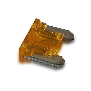 Orificio para fusibles de 5 amperios de microondas: Amazon ...