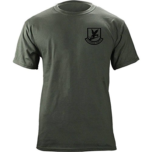 Security Force Air Force Full Color Veteran Patch T-Shirt (Large, Green)