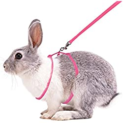 Furbulous Small Pet Rabbit Harness Leash for Running/ Walking with Safe Bell for Guinea Pigs, Ferret, Cat, Rat, Pet Pigs and Other Small Animals