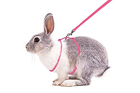 Furbulous Small Pet Rabbit Harness Leash for Running/ Walking with Safe Bell for Guinea Pigs, Ferret, Cat, Rat, Pet Pigs and Other Small (Ferret Harnesses And Leashes)