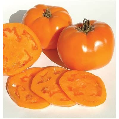 David's Garden Seeds Tomato Beefsteak Valencia 1749 (Orange) 50 Non-GMO, Organic, Heirloom Seeds : Garden & Outdoor