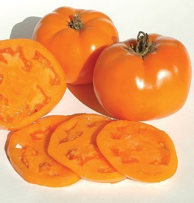 Orange Tomatoes - David's Garden Seeds Tomato Beefsteak Valencia SV749OP (Orange) 50 Non-GMO, Organic, Heirloom Seeds