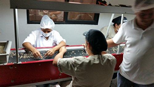 5 Lbs, Single Origin Unroasted Green Coffee Beans, Specialty - Farm La Beatulia