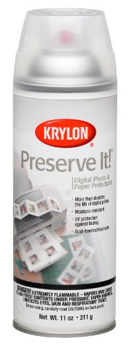 Krylon K07026007 Preserve It Aerosol Spray, 11 Ounce, Gloss Finish