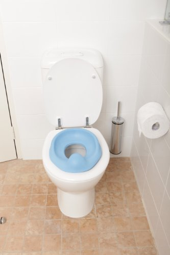Soft Touch Toilet Seat. Amazon com  Dreambaby Soft Touch Potty Seat Blue Toilet Training Seats Baby