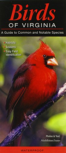 Birds of Virginia: A Guide to Common & Notable Species (Quick Reference ()