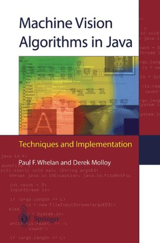Machine Vision Algorithms in Java: Techniques and Implementation by Springer