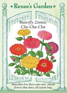 Butterfly Zinnias Cha-Cha-Cha Seeds