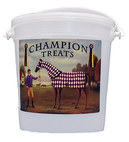 Champion Low Sugar Regular Treats 1 Pound Container