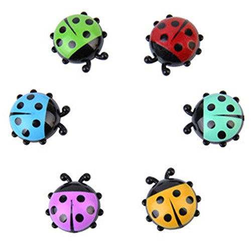 Chige Set of 6 Creative Cute Ladybug Refrigerator Kitchen Magnets - Perfect Stainless Steel Refrigerator Magnets for Home Magnets, Office Magnetic, Whiteboard Magnets (Ladybug)
