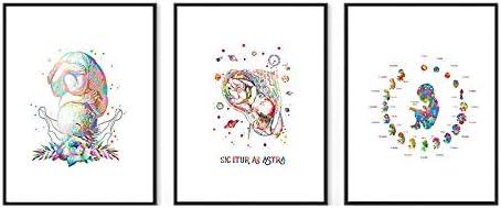 Impression peinture de grossesse Femme enceinte aquarelle Art m/édical Gyn/écologie Obst/étricienne sage-femme Obgyn D/écoration murale