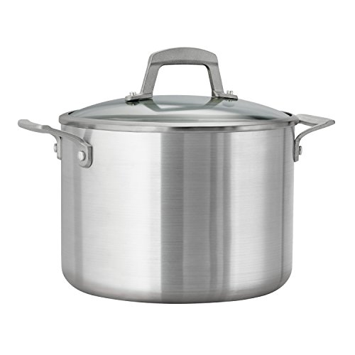 Tramontina Professional Cookware (Tramontina Professional Covered Stock Pot,Glass Lids, Satin Finish, Made in USA, 8-Quart)
