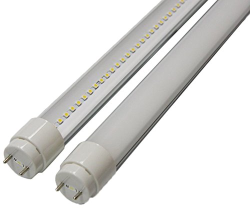 Goodlite G-20410  22-watt 4-Feet T8 T10 or T12 LED Tube 32W 40W Fluorescent Bulb Replacement, UL and DLC Approved Single End Power, Clear