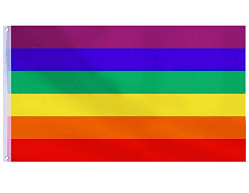 Besteek Gay Rainbow Flag, Pride Flag - 3x5 Feet LGBT Flag with Brass Grommets, Gay Pride Banner Flag Decorations for Mardi Gras, LQBTQ Pride Parade