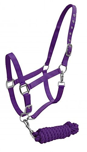 Showman 2 Ply Nylon Horse Halter with Nickel Plated Hardware with 7' Cotton Lead (Purple)