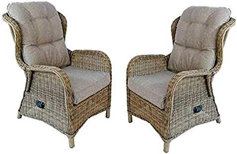 Edenjardi Lote 2 sillones reclinables para Exterior: Amazon.es: Jardín