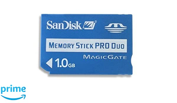 SanDisk Memory Stick Pro Duo 1gb: Amazon.es: Electrónica
