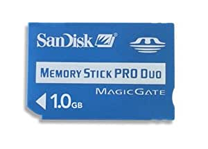 SanDisk 1 GB Memory Stick Pro Duo (SDMSPD-1024-A11) - Bulk Package