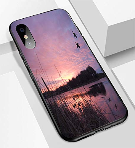 iPhone X/XS Ultra-Thin Glass Back Phone case,Ducks Landing at Sunrise Soft and Easy to Protect The Protective case ()