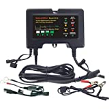 BatteryMINDer Charger/Maintainer/Desulfater - 12V, Model# 2012