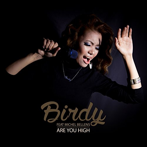 Are You High (feat. Michel Bel...