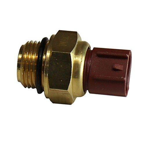 SilverAndJewelry Sea Shell Italian Charm Stainless Steel Bracelet Link