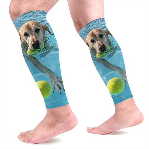 Light Venus Labrador Dog Swim Play Baseball Sport Calf Compression Sleeve for Shin Splint, Calf Pain Relief, Varicose Veins - Leg Compression Sleeves Socks for Men & Women ()