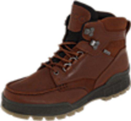 (ECCO Men's Track II High GORE-TEX waterproof outdoor hiking Boot, Bison, 42 EU (US Men's 8-8.5 M))