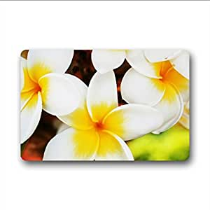 Durable Custom Natural Plant Gingk (2) Doormat 23.6 Inches x 15.7 Inches Non-slip & Machine-washable Fabric Material