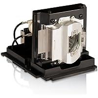 InFocus Original SP-LAMP-056 Projector Lamp