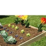 4ft. x 4ft. x 5 1/2in. Eden Raised Garden Bed