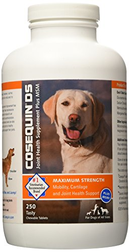 NutraMax Cosequin DS PLUS MSM Chewable Tablets, 250 ct