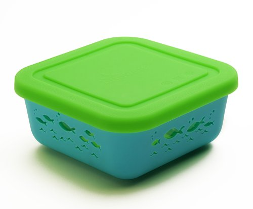 Brinware / School of Fish Glass Food Storage Container with Silicone Sleeve
