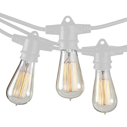 Commercial Grade White Rope Light (Brightech - Ambience Pro Vintage Edition with WeatherTite Technology - Outdoor Weatherproof Commercial Grade Light Strand with Included Antique Edison Bulbs - White Color)