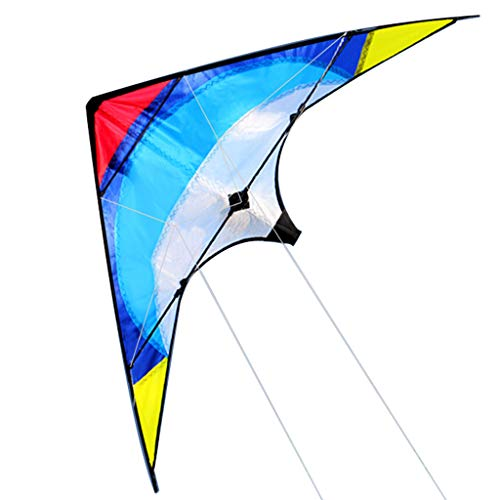 TKI-S Double Line Flying Fish Stunt Kite Outdoor Play Gliding Toys Best Delta Kite Suitable for Children and Beginners Easy Flying Tail Ribbon Blue (Double Kite)