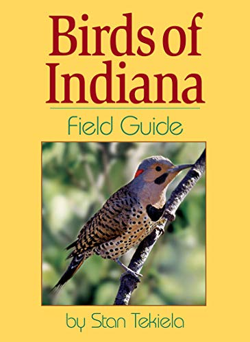 Birds of Indiana Field Guide (Best Place For Finch Feeder)